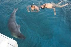 FISHING-JH-JOHN-CASHMAN-Munk Seal